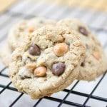 EVERYTHING Cookies REDO-6