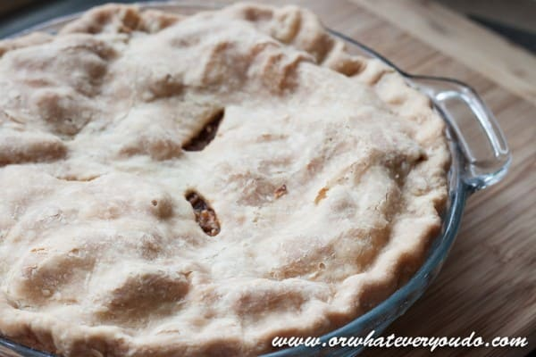 Old Fashioned Apple Pie from OrWhateverYouDo.com