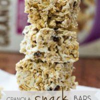 Easy Granola Snack Bars