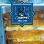 Zaycon Ham & Cheese Scalloped Potato Casserole