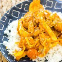 Korean Spicy Stir Fried Chicken and Vegetables