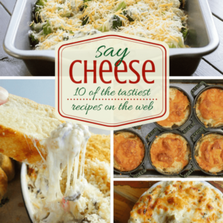 SO cheesy! 10 easy cheese {y} recipe ideas