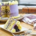 Spring Blueberry Lemon Pudding Cheesecake Cake-89