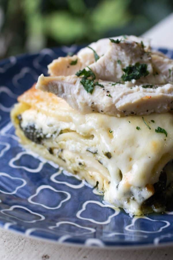 Chicken Alfredo Lasagna with Spinach
