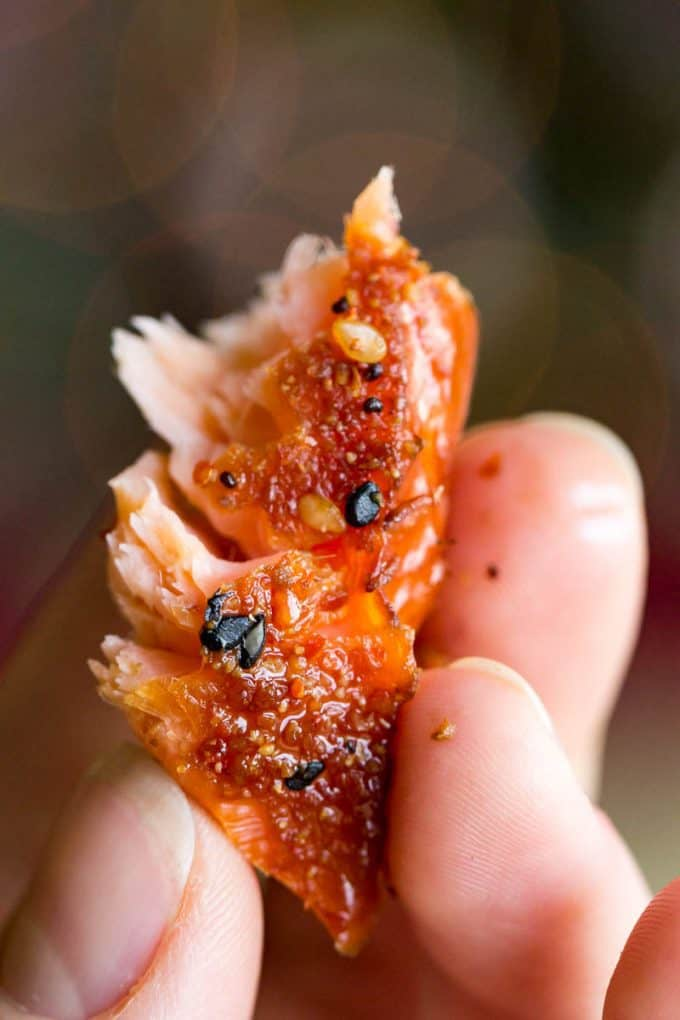 ogarashi Smoked Salmon