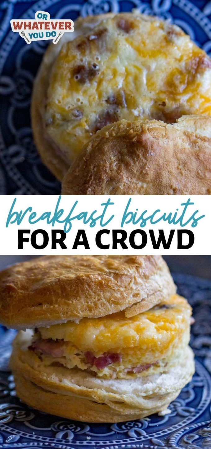 Breakfast Biscuits for a Crowd