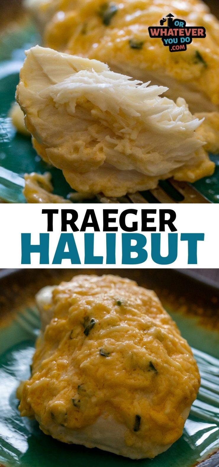 Traeger Halibut with Parmesan Crust
